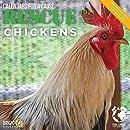 Bright Day Calendars 2021救助鶏の壁カレンダー、12 x 12インチ、家畜カレンダー 12インチ×12インチ