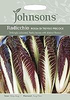 【輸入種子】 Johnsons Seeds Radicchio (Chicory) Rossa di Treviso precoce ラディッキオ(チコリー)・ロッサ・デ・トレヴィソ・プレコーチェ ジョンソンズシード