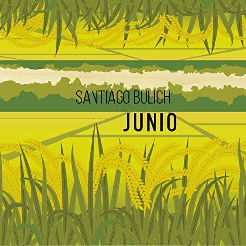 SantiagoBulich
