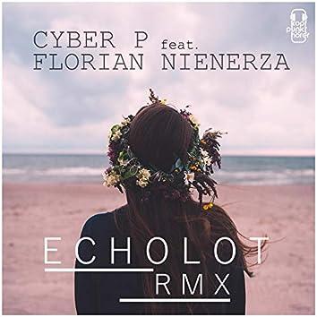 Echolot [Remix] (feat. Florian Nienerza)