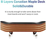 Zoom IMG-1 completa skateboard deck adulti bambini