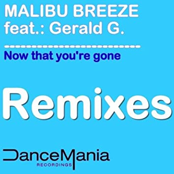 Now That You\\\'re Gone (Remixes)