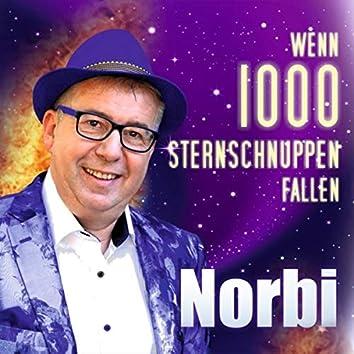 Wenn 1000 Sternschnuppen fallen