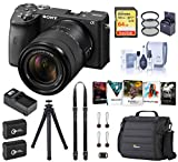 Sony Alpha a6600 Mirrorless Digital Camera with 18-135mm Lens (ILCE6600M/B) Essential Bundle with Bag, 2 Extra Batteries, Charger, 64GB SD Card, and Accessories