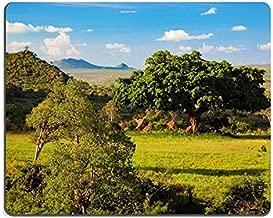 17P01265 Mousepads Grassland with Rich Flora Savanna and Bush Landscape in Africa Tsavo West Kenya Mat Customized Desktop Laptop Gaming Mouse Pad