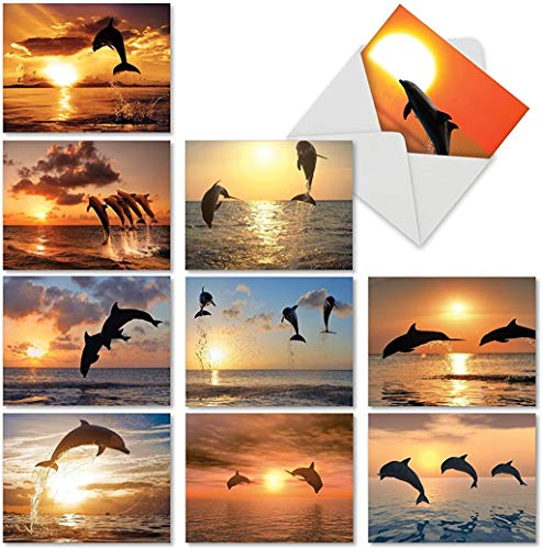 10 Beautiful Dolphin Note Cards with Envelopes, Assorted 'Sunset Dolphins' Animal Blank Greeting Cards, All-Occasion Stationery Set for Baby Showers, Birthdays, Thank Yous - NobleWorks M6460OCB
