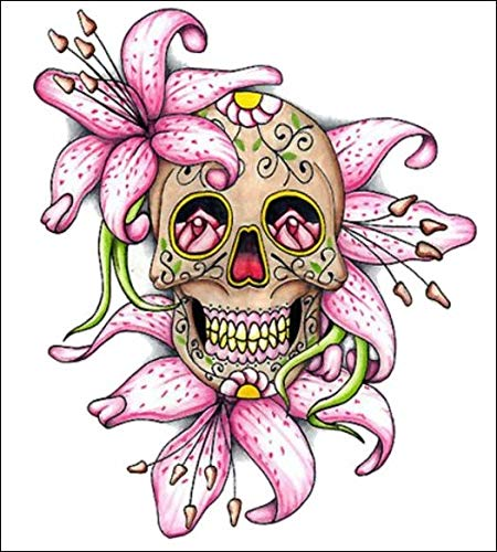 Tamengi Lilly Sugar Skull Decal Car Sticker, Car Bumper Decals for Cars Windows Walls Fridge Laptops 11inch