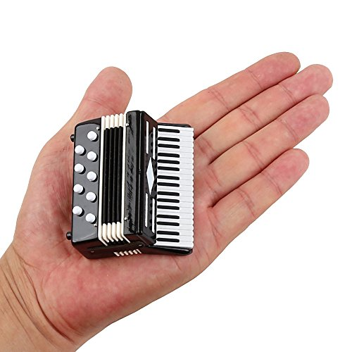 Seawoo Dselvgvu Miniature Accordion with Case Mini Musical Instrument Replica Collectible Miniature Dollhouse Model Home Decoration (Black, 2.76'x2.36'x1.18')