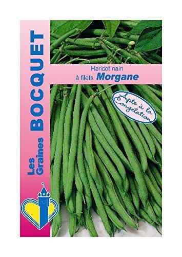 Les Graines Bocquet - Graines De Haricot Nain À Filet Morgane 60G - Graines Potagères À Semer - Sachet De 60Grammes