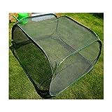 Jnzr Extérieur Lutte Contre Les Insectes des Plantes Cages Pliable Plantes Portable de Protection Net Couverture Anti-Oiseau Net (98x98x50cm)
