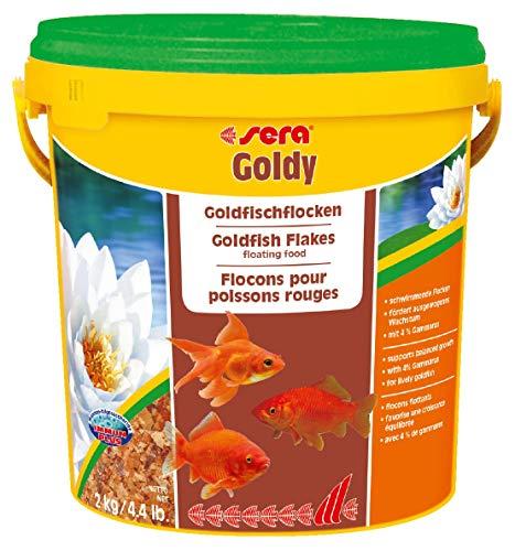 sera goldy ein Goldfischfutter für kleinere Goldfische und andere wählerische Kaltwasserfische im Aquarium oder Teich