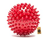 The Pets Company Natural Rubber Spiked Ball Dog Chew Toy, Puppy Teething Toy, 3 Inches