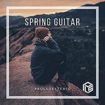 Spring Guitar