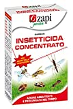 Zapi Insecticida Garban Ml.250 Concentrada
