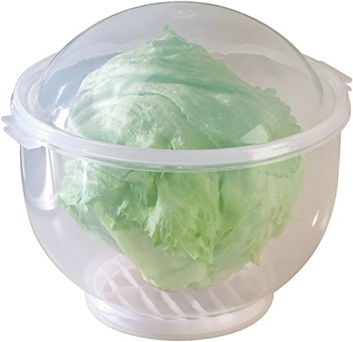 "high quality WalterDrake Lettuce KeeperTM - Lettuce outlet online sale Crisper Salad Keeper Container Keeps your Salads and Vegetables Crisp and Fresh- 7"" X discount 8"" online sale"