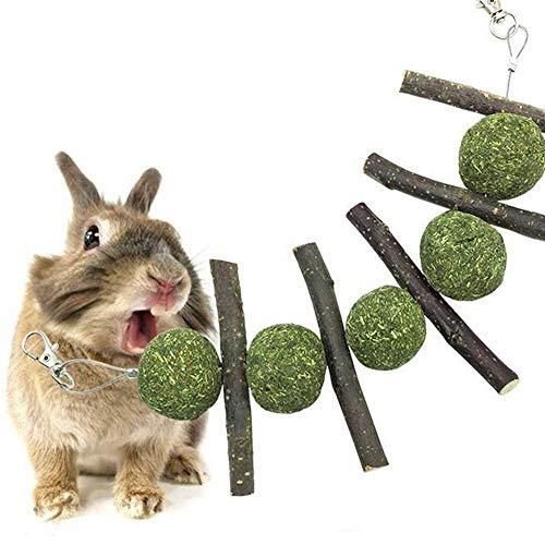quanjucheer Kaninchen Hamster Leckerlis Spielzeug Snacks Kaustab Apfelbaum mit Grasball Leckerlis Zähne Reinigung