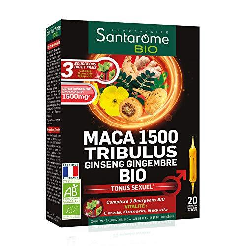 Santarome - Maca 1500 Tribulus Ginseng Gingembre Bio 20 Ampoules Tonus Sexuel Santarome