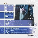Zoom IMG-2 pack 2 sanaexpert arthro forte