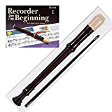 Recorders Review and Comparison