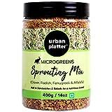 Urban Platter Microgreens Sprouting Mix, 400g / 14oz [Clover, Radish, Fenugreek & Alfalfa Seeds Mix]