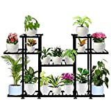 TrustBasket Aster Planter Stand - Multiple Pot Stand Indoor/Outdoor, Multipurpose Stand, Racks, Planter Stand