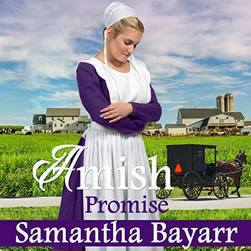 Amish Romance: The Promise  By  cover art