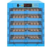 AJLDN Incubatrice per Uova, Incubatrice Eggs Automatic, 320 Uova Incubatore Intelligente Digitale con Schermo a LED di Temperatura e Sensore di Temperatura Preciso,Q