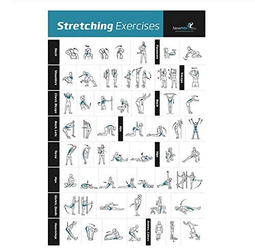 YOUCAIHUA Bilanciere con manubri Allenamento Stretching Esercizi per Il Corpo Body Gym Chart Poster Art Canvas Room Wall Print Decor 40 * 60cm Senza Cornice