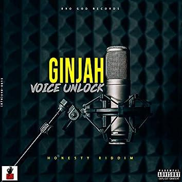Voice Unlock
