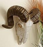 Deco 79 44737 Polystone Wall Ram Skull Décor, 14'W/12'H