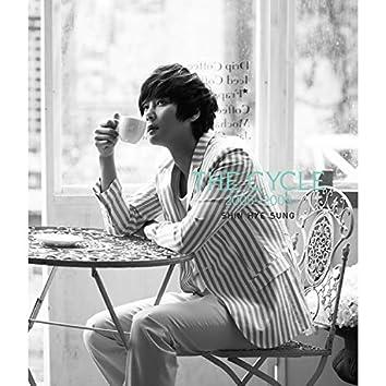 The Cycle 2005-2009 Shin Hye Sung