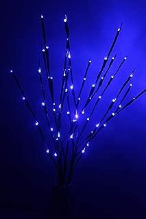 Best blue tree shop Reviews
