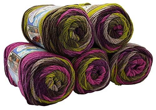 Alize Burcum Batik 5 x 100 Gramm Wolle Mehrfarbig mit Farbverlauf, 500 Gramm Strickwolle (Beere Oliv Taupe 3940)
