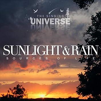 Sunshine and Rain: Sources of Life