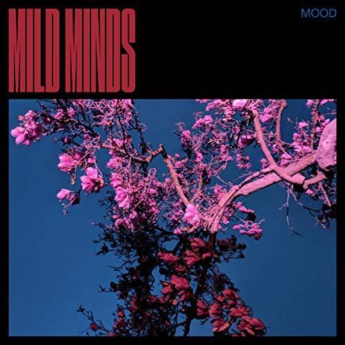 Mild Minds