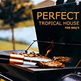 Perfect Tropical House For BBQ's