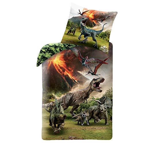 JW Dino Jungen-Bettwäsche · 1 x Kissenbezug 80x80 + 1 x Bettbezug 135x200 cm · Jurassic World Dinosaurier · 100% Baumwolle · Kinderbettwäsche · Teenagerbettwäsche