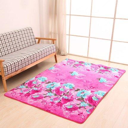 Spesso corallo velluto tappeto moderno camera da letto minimalista soggiorno tavolo bar divano letto per finestre e tappeto rettangolare