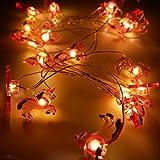 LED-Lichterkette, warmweiß, dekorative Feen-Lichterkette, 2m, 20 LEDs für Innen- und...