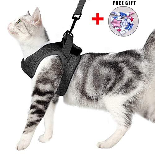 Katzengeschirr Set mit Leine für Autofahren & Spaziergang, zum Gehen 360 °Katzenleine mit Geschirr für Katzen Kitten Katzengarnitur Kleine Katze Cat Harness Kaninchen mit kationischem Stoff (L, grau)