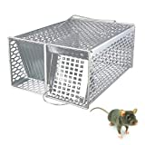 Rockbirds Catch and Release Trap