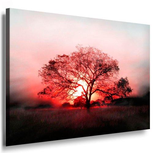 Bilder Kunstdrucke / Boikal / Leinwandbild, Bild mit Keilrahmen Baum im Sonnenuntergang 100x70 cm xxl.366