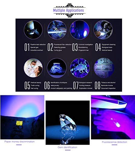 UV Flashlight,LED UV Torch 2 in 1 UV Black Light with High Lumen for Pets Urine & Stains & Bed Bug& Scorpions 2