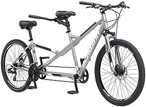 Schwinn Twinn Adult Tandem Bicycle, Low Step-Through, 26-Inch Wheels, Large Frame, Grey