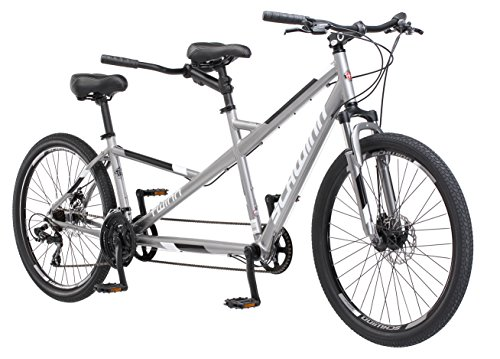 Schwinn Twinn Adult Tandem Bicycle, Low Step-Through, 26-Inch Wheels, Large Frame, Grey