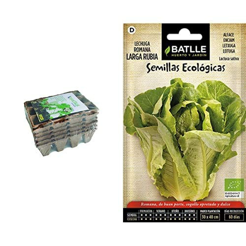 Flower 55044 55044-Semilleros biodegradables, 12 cavidades, 6 Unidades, Marron, 3.5x4.5x3.5 cm + Semillas Batlle Ecológicas Hortícolas Lechuga Romana Larga Rubia Eco