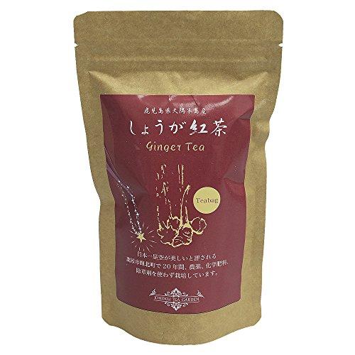 グリーンファースト しょうが紅茶 ティーバッグ 3g×15袋 生姜茶