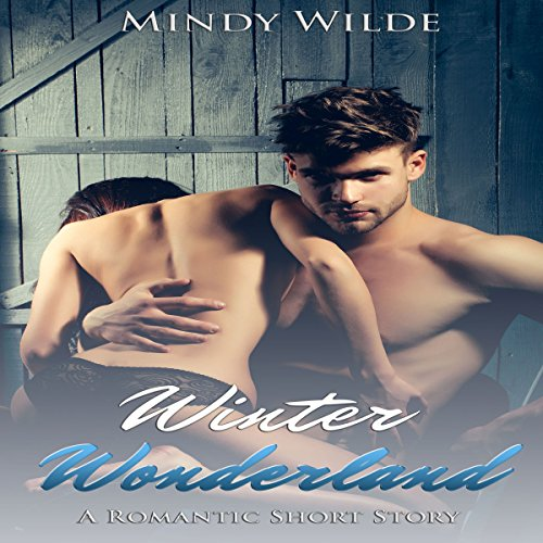 Winter Wonderland (A Romantic Short Story) audiobook cover art