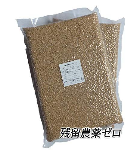 【新米令和2年産 残留農薬ゼロ】秋田県産あきたこまち 玄米5kg(真空パック2.5kg×2)