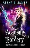 Academy of Sorcery: Term 2: Fallen Master